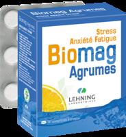 Lehning Biomag Comprimés à Croquer Agrumes B/90 à BOURG-SAINT-ANDÉOL