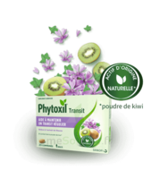 Phytoxil Transit Comprimés B/20 à BOURG-SAINT-ANDÉOL