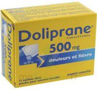 Doliprane 500 Mg Poudre Pour Solution Buvable En Sachet-dose B/12 à BOURG-SAINT-ANDÉOL
