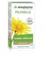 Arkogélules Piloselle Gélules Fl/45 à BOURG-SAINT-ANDÉOL