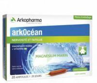 Arkocean Magnesium Marin Solution Buvable Caramel 20 Ampoules/10ml à BOURG-SAINT-ANDÉOL