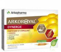 Arkoroyal Dynergie Ginseng Gelée Royale Propolis Solution Buvable 20 Ampoules/10ml à BOURG-SAINT-ANDÉOL