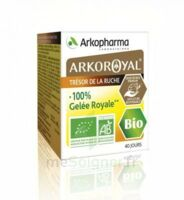 Arkoroyal 100% Gelée Royale Bio Gelée Pot/40g à BOURG-SAINT-ANDÉOL