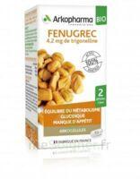 Arkogélules Fenugrec Bio Gélules Fl/40 à BOURG-SAINT-ANDÉOL