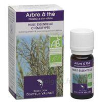 Docteur Valnet Huile Essentielle Arbre A The / Tea Tree 10ml à BOURG-SAINT-ANDÉOL
