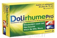 Dolirhumepro Cpr Plq/16 à BOURG-SAINT-ANDÉOL