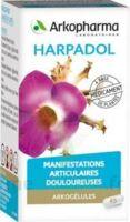 Arkogelules Harpagophyton Gélules Fl/150 à BOURG-SAINT-ANDÉOL