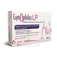 Gynophilus Lp Comprimés Vaginaux B/6 à BOURG-SAINT-ANDÉOL