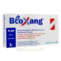 Bloxang Eponge De Gélatine Stérile Hémostatique B/5 à BOURG-SAINT-ANDÉOL
