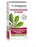 Arkogelules Marronnier D'inde Gélules Fl/45 à BOURG-SAINT-ANDÉOL