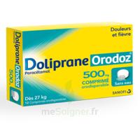 Dolipraneorodoz 500 Mg, Comprimé Orodispersible à BOURG-SAINT-ANDÉOL