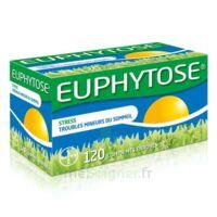 Euphytose Comprimés Enrobés B/120 à BOURG-SAINT-ANDÉOL