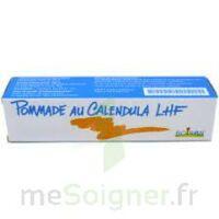 Calendula Lhf Pom T/20g à BOURG-SAINT-ANDÉOL