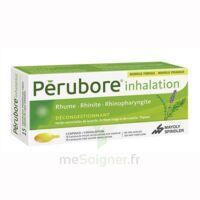 Perubore Caps Inhalation Par Vapeur Inhalation Plq/15 à BOURG-SAINT-ANDÉOL
