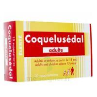 Coquelusedal Adultes, Suppositoire à BOURG-SAINT-ANDÉOL