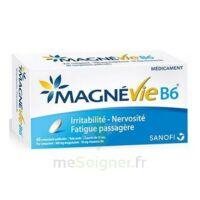 Magnevie B6 100 Mg/10 Mg Comprimés Pelliculés Plaq/60 à BOURG-SAINT-ANDÉOL