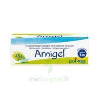 Boiron Arnigel Gel T(alumino-plastique)/45g à BOURG-SAINT-ANDÉOL