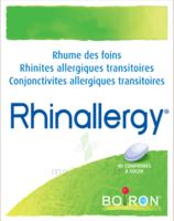 Boiron Rhinallergy Comprimés B/40 à BOURG-SAINT-ANDÉOL