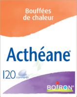 Boiron Acthéane Comprimés B/120 à BOURG-SAINT-ANDÉOL